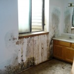 Water Damage Franklin