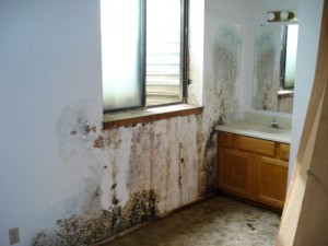 Water Damage Kenosha
