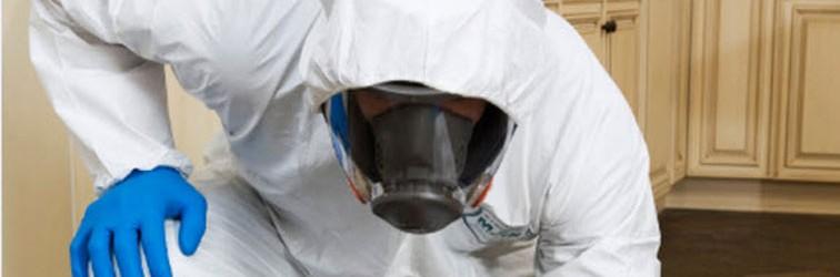 biohazard-2-756x250